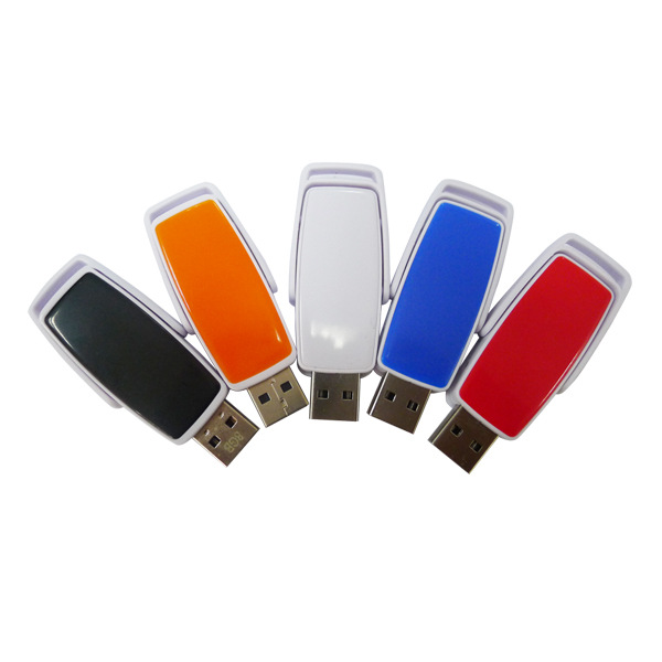 Custom Promotional Plastic Case USB Flash Drive